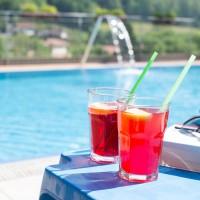 Hotel Oasi Verde Prestina val Camonica Dettaglio Piscina