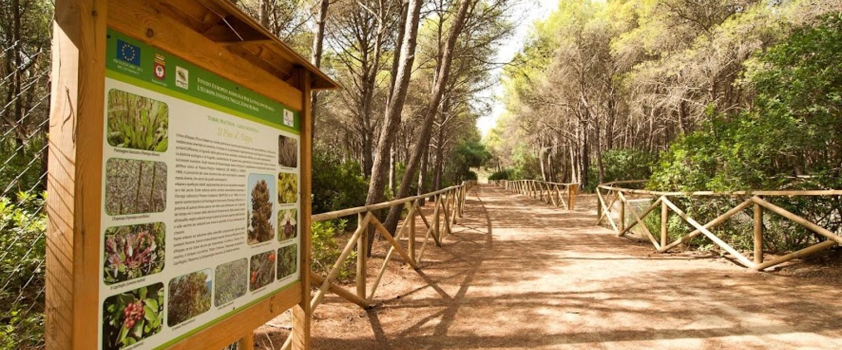 Torreserena Village