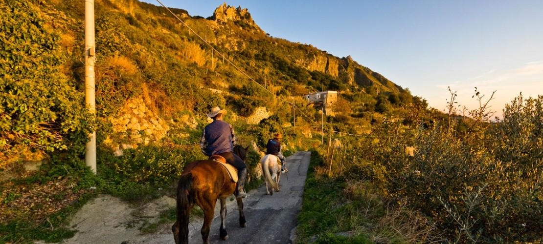 Escursione a cavallo epomeo ischia
