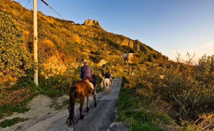 Escursione epomeo Ischia