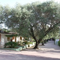 green garden club briatico recensioni