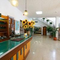 Hotel La Pineta dettagli hall